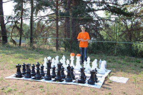 шахматы-шашки